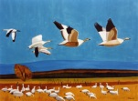 03 Les grandes oies blanches - 1990