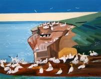 85 Les fous de Bassan de l'Île Bonaventure - 1995